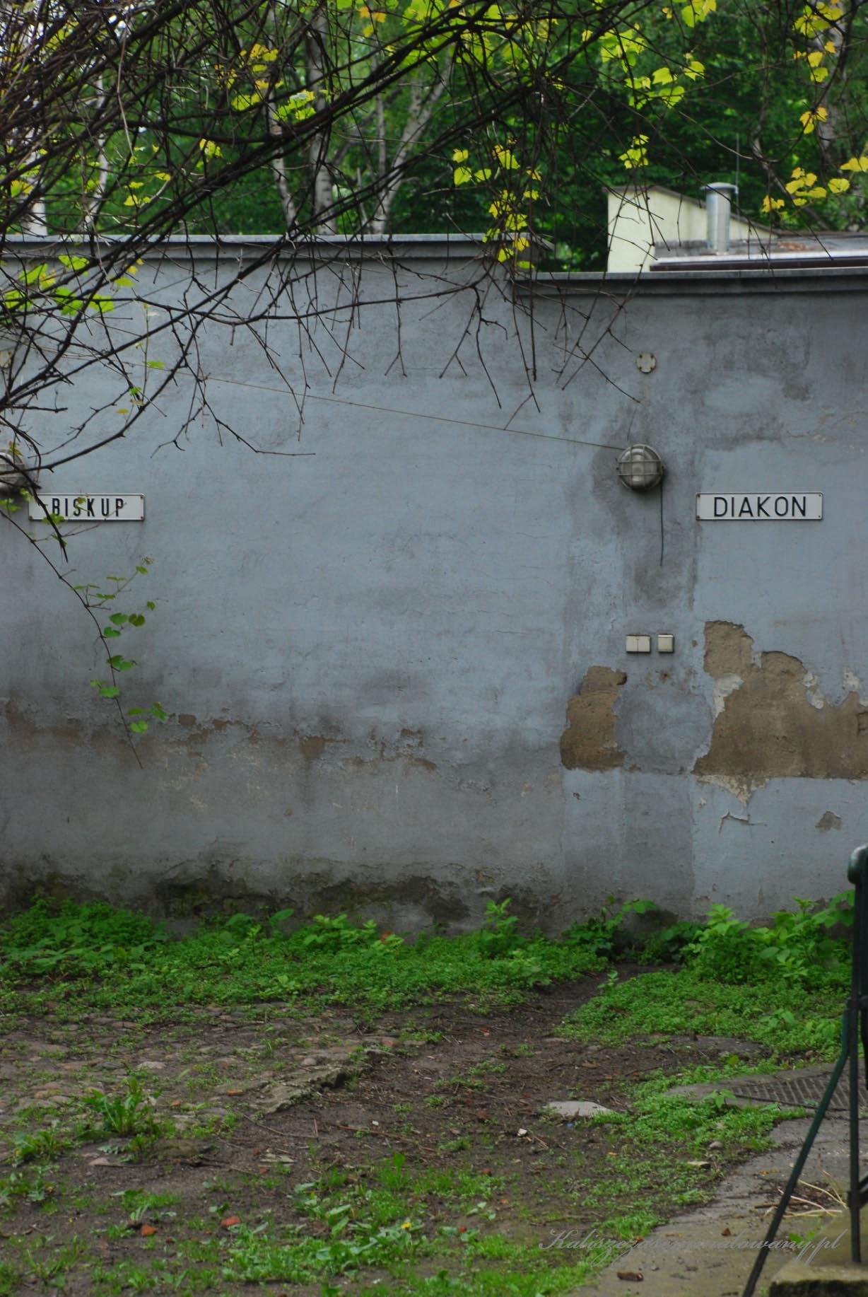 Dom_pod_anilolami-19