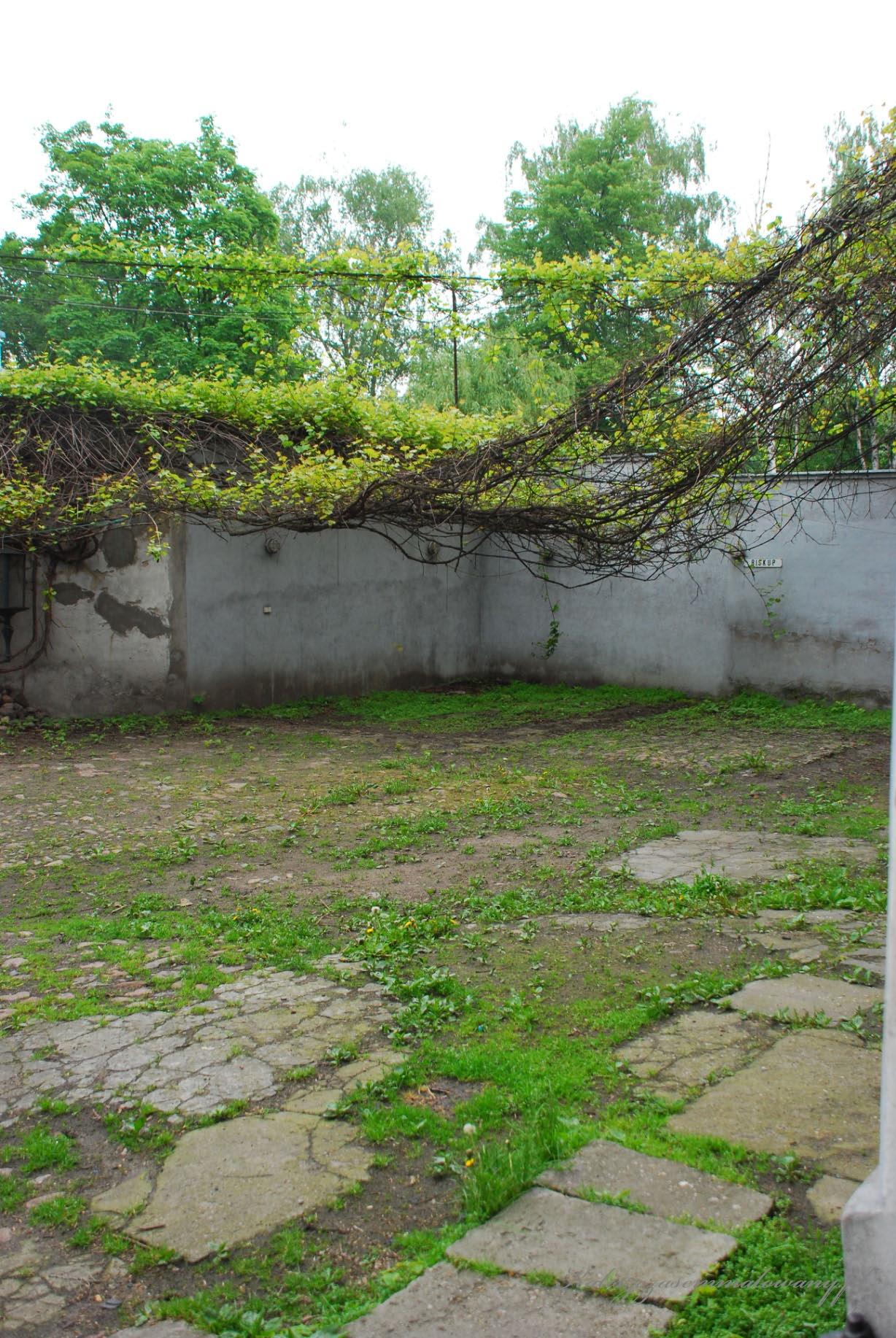 Dom_pod_anilolami-20