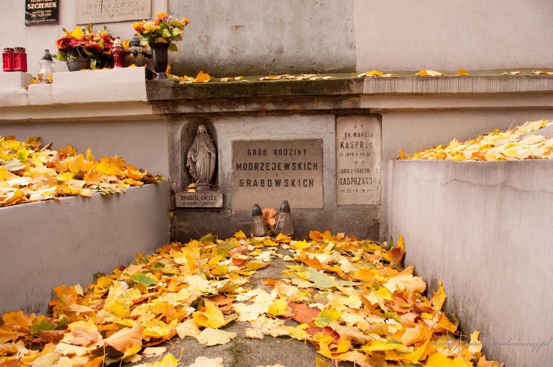Cmentarz_katolicki_Rogatka-36