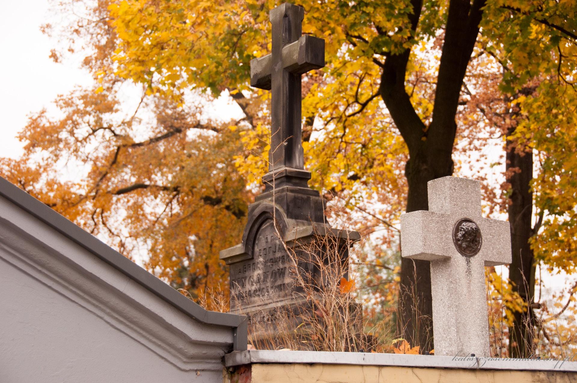 Cmentarz_katolicki_Rogatka-42