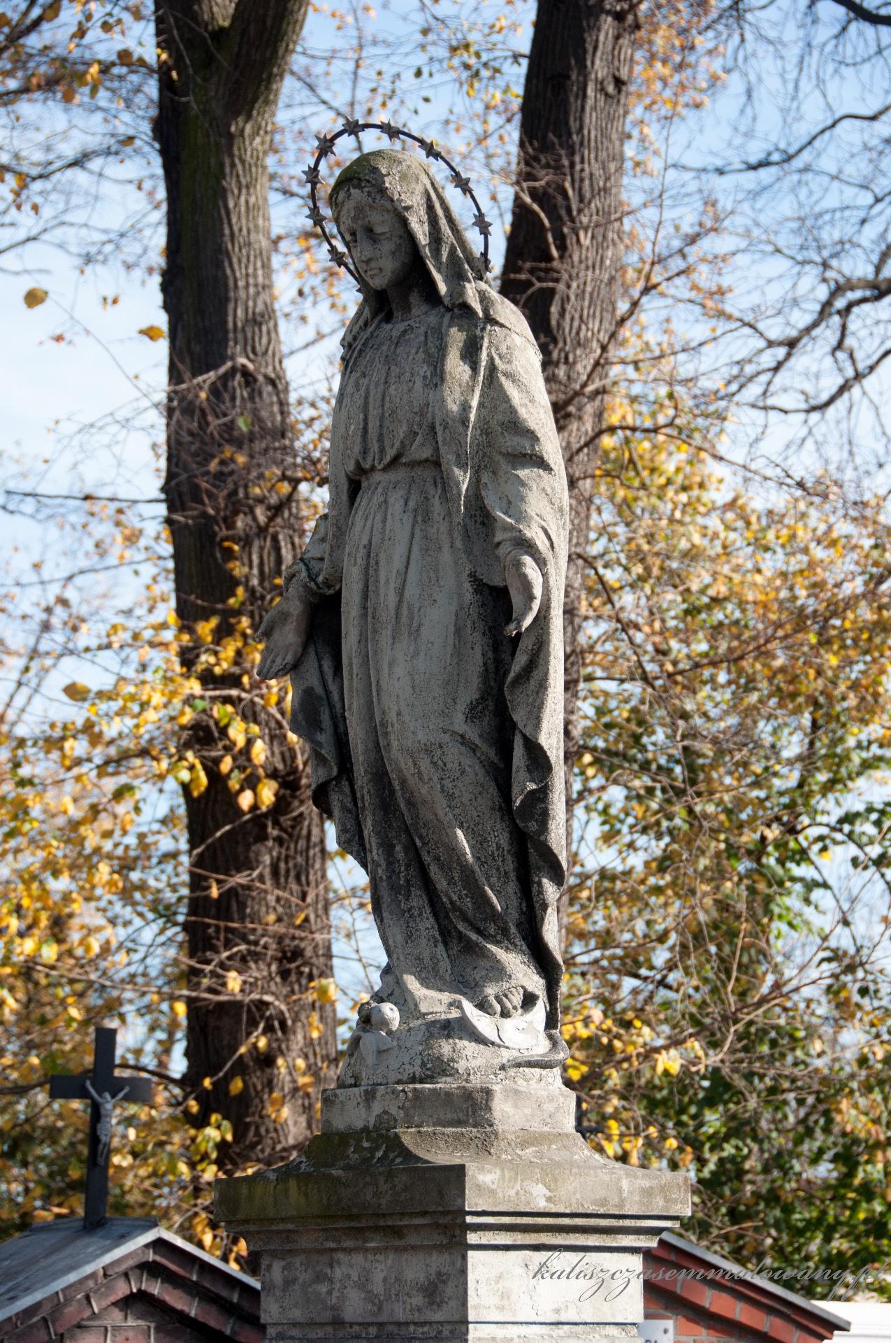 Cmentarz_katolicki_Rogatka-48