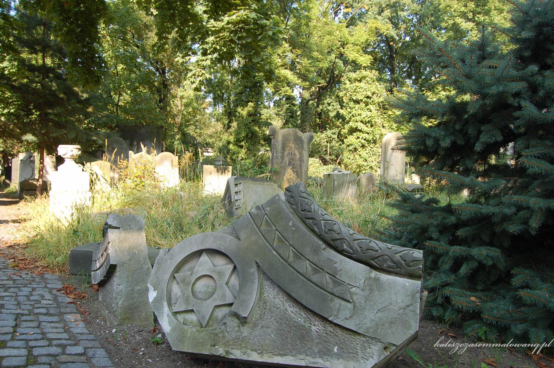 cmentarz_zyd_wr-09