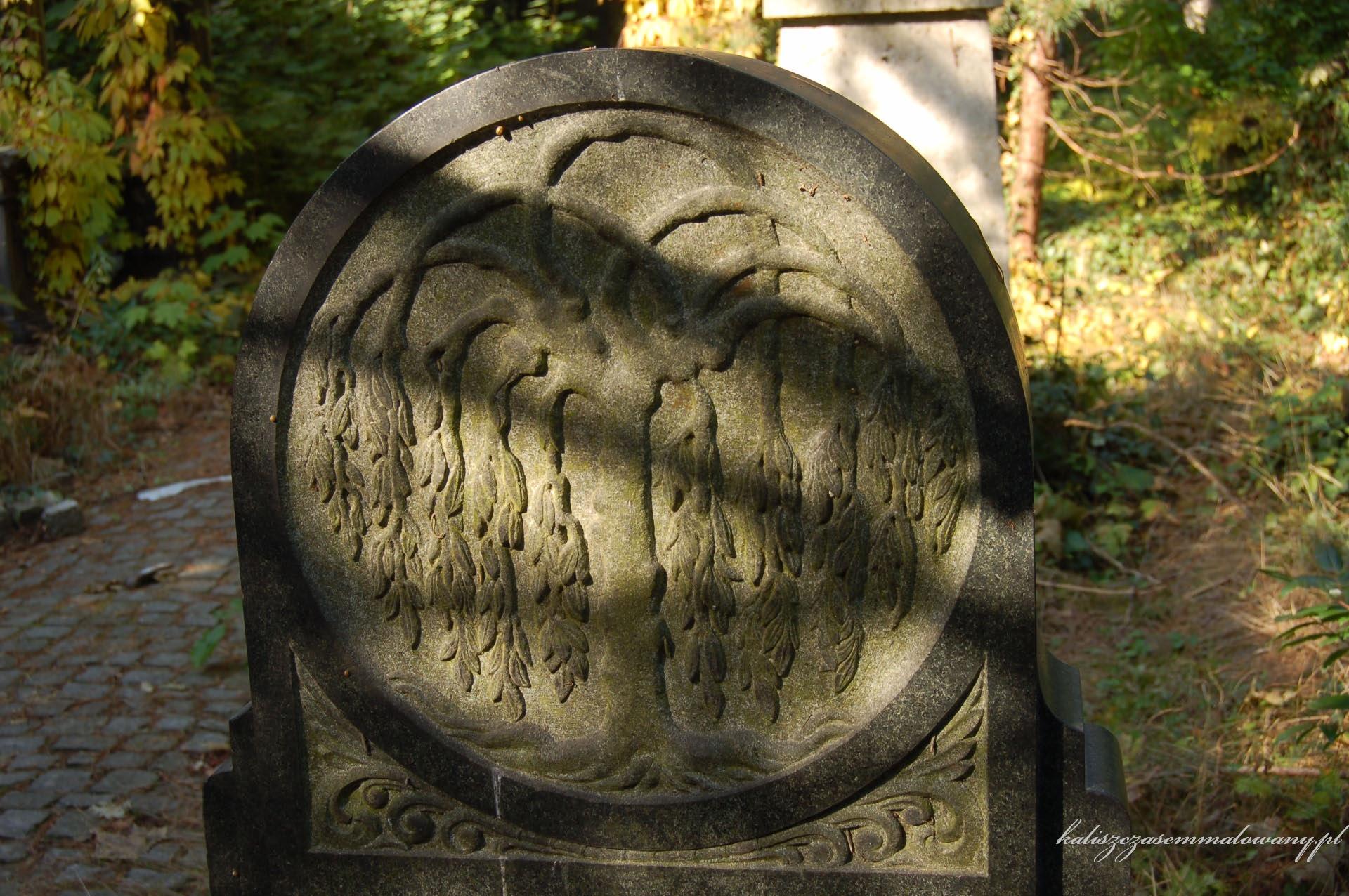 cmentarz_zyd_wr-15