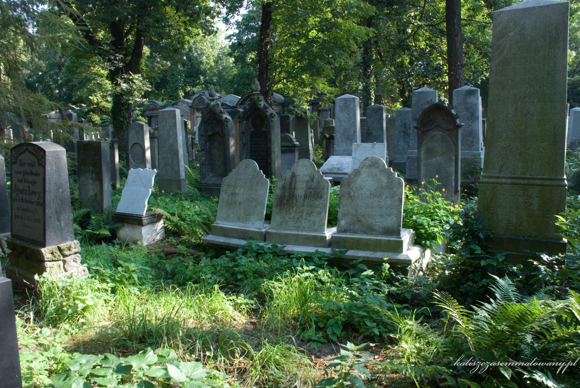 cmentarz_zyd_wr-16