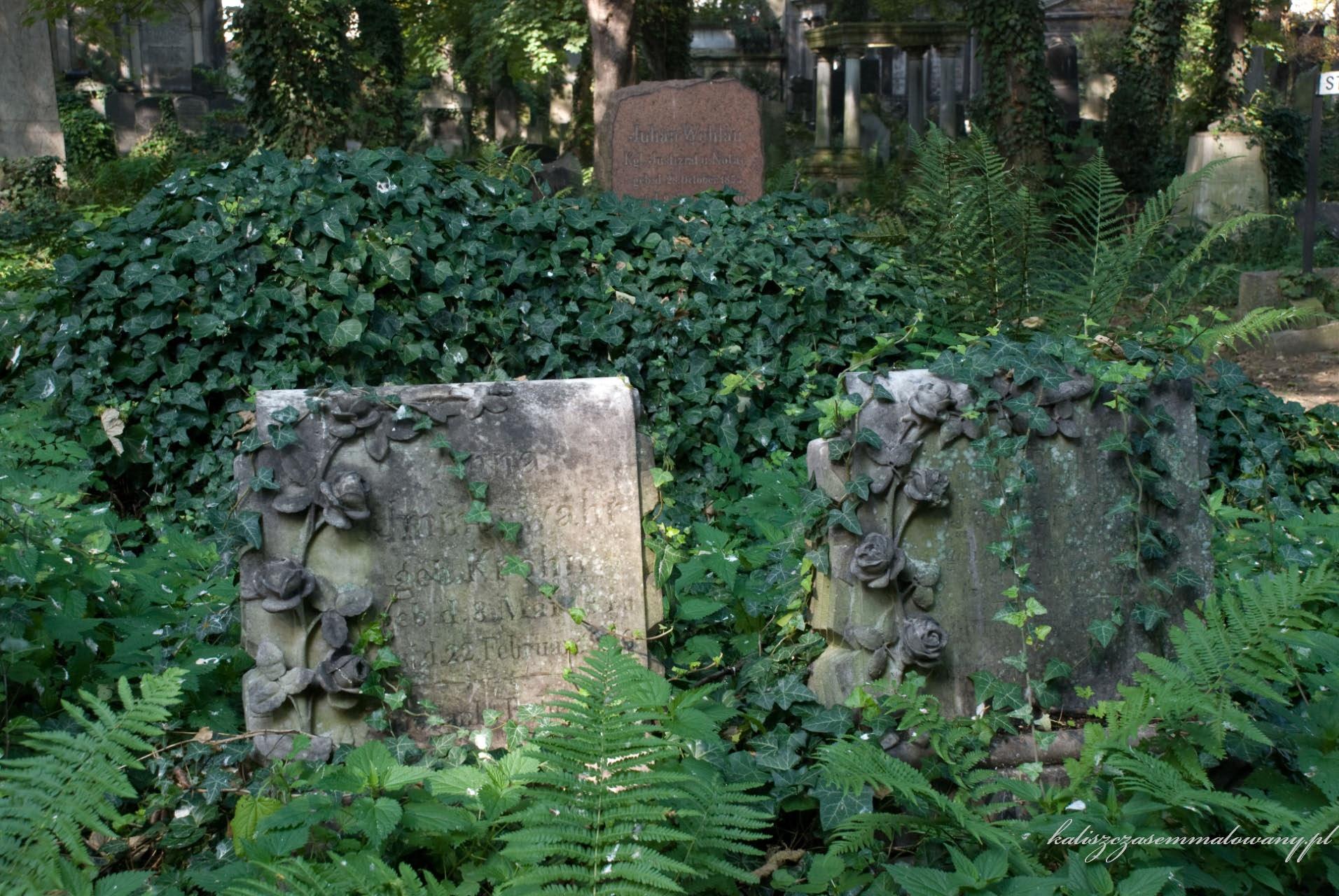 cmentarz_zyd_wr-23