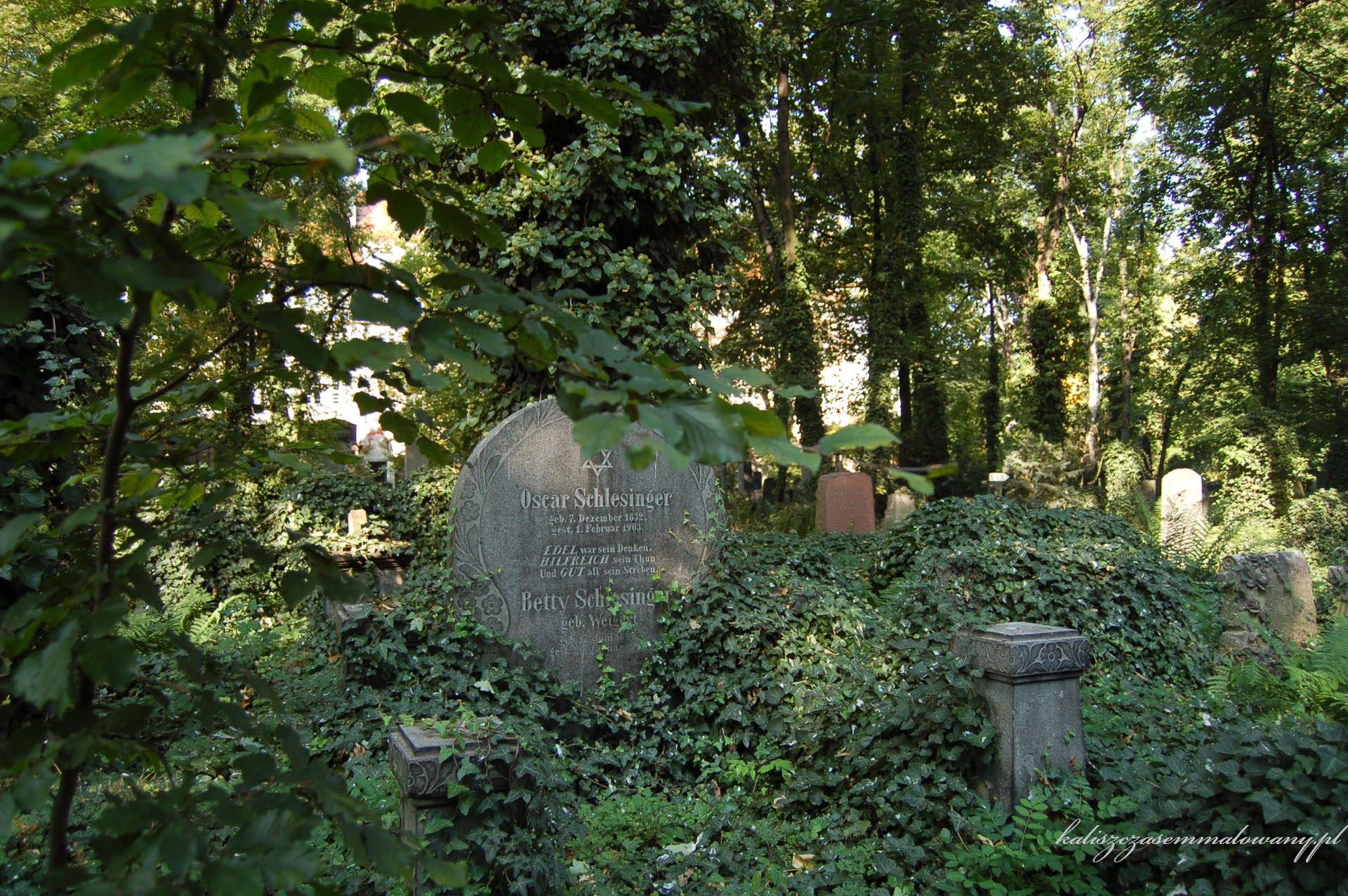 cmentarz_zyd_wr-24
