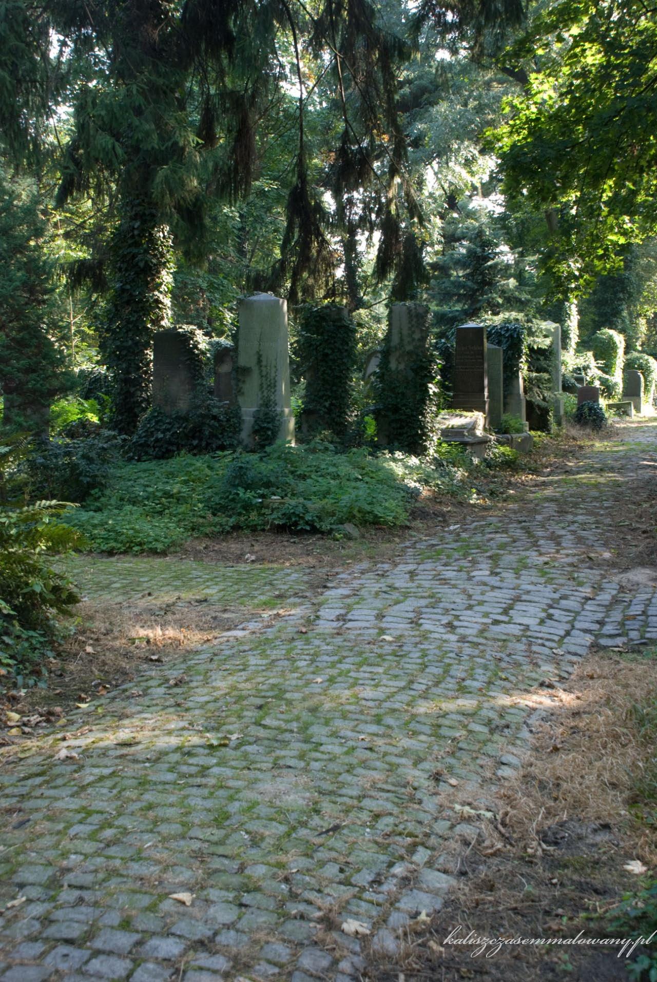 cmentarz_zyd_wr-25