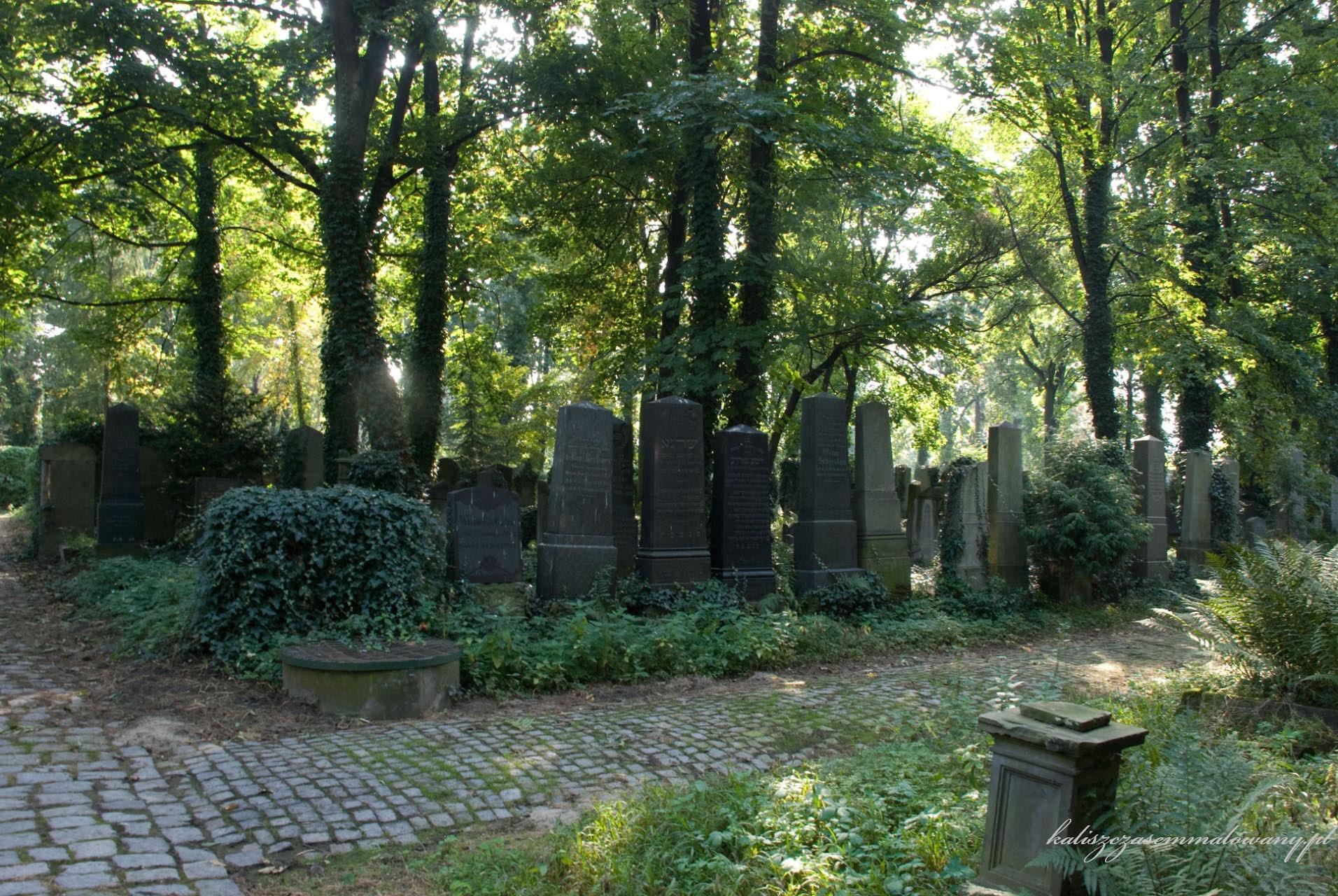 cmentarz_zyd_wr-26