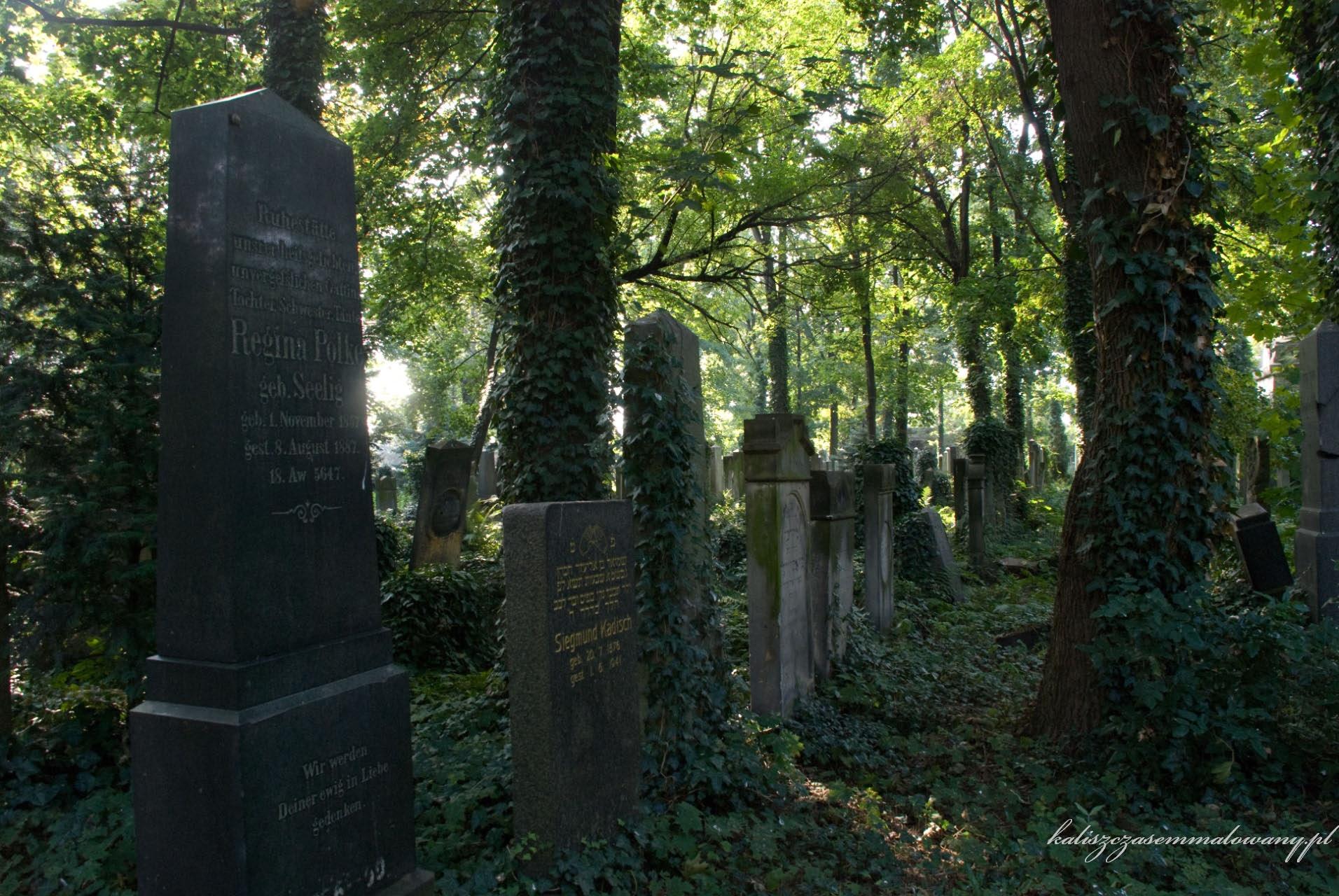 cmentarz_zyd_wr-27