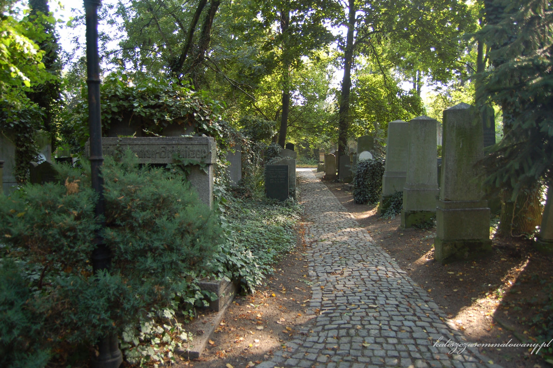 cmentarz_zyd_wr-30