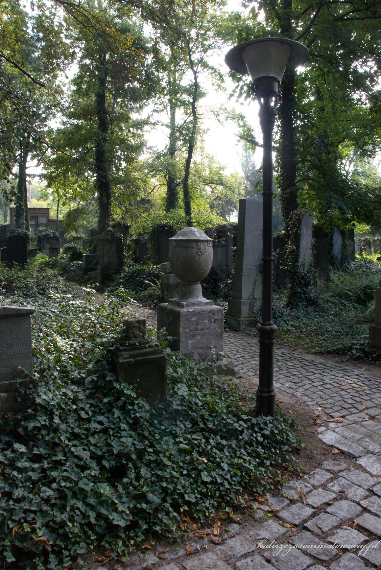 cmentarz_zyd_wr-33