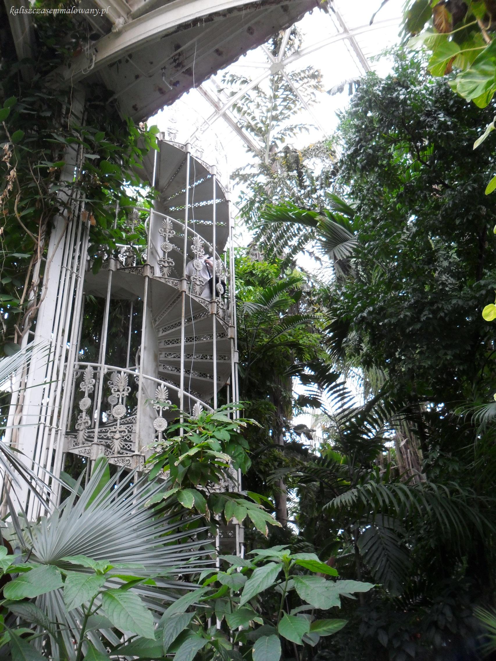 Kew_Garden-13