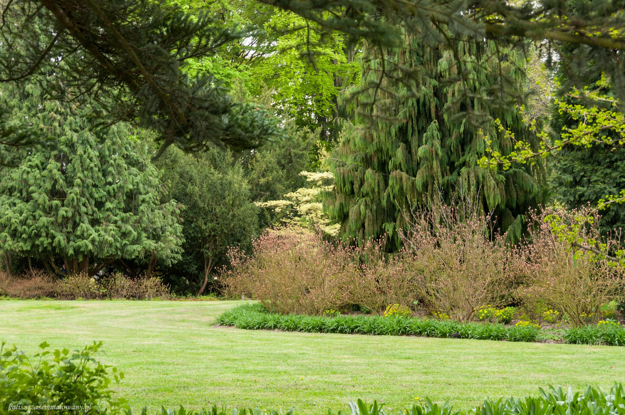 arboretum-woj-08